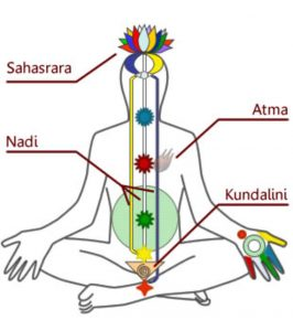 Chakras and kundalini awakening
